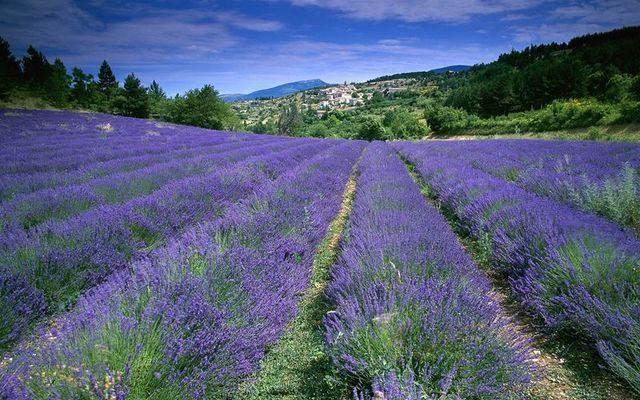 self guided motorcycle tour provence