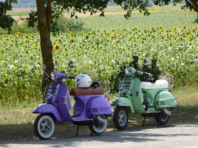 scooter ride france