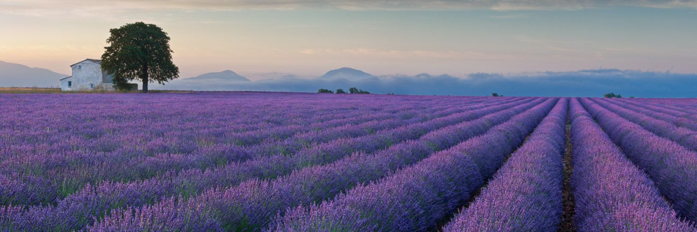 provence-ride-in-tours